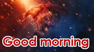 Gd Mrng Images Photo HD Free Download