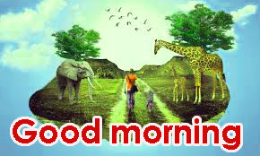Gd Mrng Images Pics Photo Download