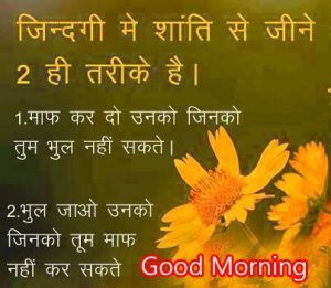 565 Hindi Quotes Good Morning Images Photo Hd Download