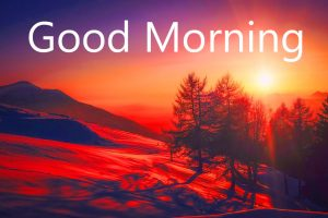 Hindi Quotes Good Morning Images Wallpaper Pictures