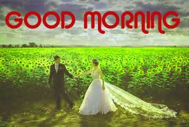 Romantic Love Good Morning Images Photo Wallpaper Pics Download