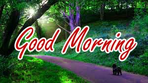 Nature Good Morning Wishes Images Photo Download