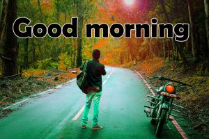 323+ Nature Good Morning Images HD Free Download