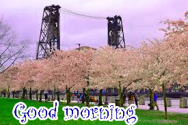 Spring Good Morning Images Photo Pics HD Download