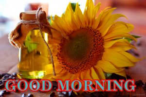 Sunflower Good Morning Images Pics Download