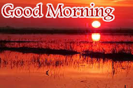Sunrise Good Morning Images Photo HD Download