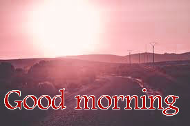 Sunshine Good Morning Images Wallpaper Download
