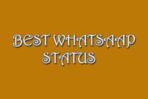 whatsaap status Download