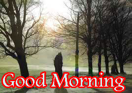 Wonderful Good Morning Images Photo Pics Download