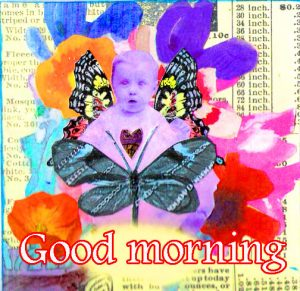 Butterfly Good Morning Wishes Images Photo Free Download