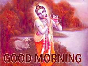 God Good Morning Wishes Images Wallpaper Pics Lord Krishna