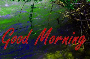 Gud Morning Images Pics Free Download