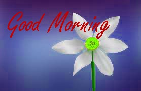 Gud Morning Wishes Images Photo Download