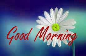 Gud / Gd mrng Morning Wishes Images Wallpaper