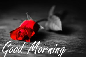Gud / Gd mrng Morning Wishes Images Photo Download