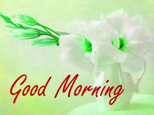 Gud / Gd mrng Morning Wishes Images HD Download