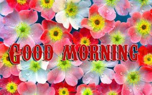 Good Morning Wishes Images Photo Pics Download for Whatsapp