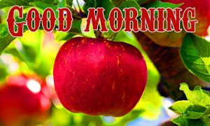 Good Morning Wishes Images Photo Wallpaper Pics HD for Whatsapp