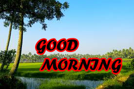 Nature Good Morning Wishes Images Pics HD Download for Whatsaap