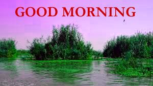 Nature Good Morning Wishes Images Wallpaper Pics Download