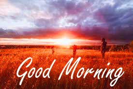 Nature Good Morning Wishes Images Pics Wallpaper Download