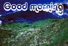 Nice Good Morning Images Photo Wallpaper Download