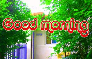 Nice Good Morning Images Photo Free Download