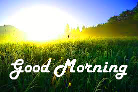 Special Good Morning Images Pictures Download With Nature