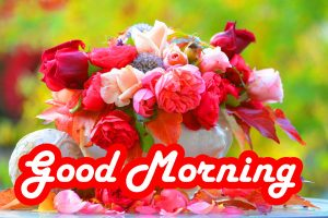 Special Good Morning Images Wallpaper Pics With Red Rose