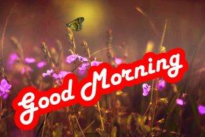 Special Good Morning Images Photo Pics HD