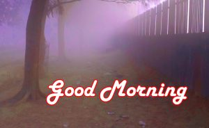 Special Good Morning Images Photo Pictures Download