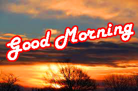 Special Good Morning Wishes Images HD Download