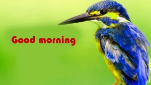 Hindi Suvichar Good Morning Images Photo Download
