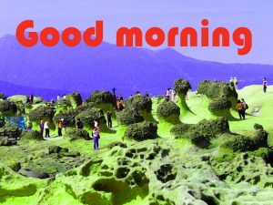 Latest Art Unique Good Morning Images Photo Pics