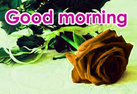 Very Sweet Good Morning Images Pictures Pics HD Free Download