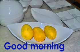 Very Sweet Good Morning Images Wallpaper For Whatsaap