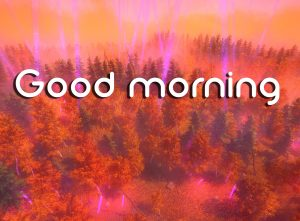 3d Good Morning Images Photo Wallpaper HD Download