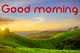 3d Good Morning Images Photo Wallpaper Free Download