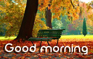 3d Good Morning Images Pictures HD Download