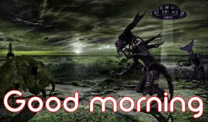 3d Good Morning Images Photo Wallpaper Download